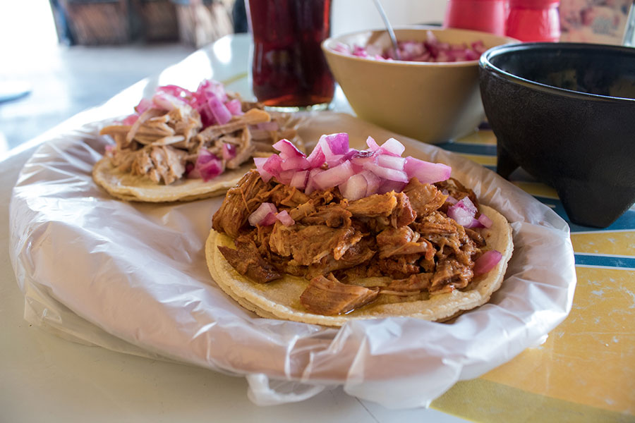 Taco de chichinita pibil